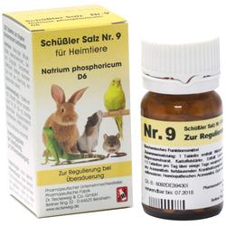 SCHÜSSLER SALZ Nr.9 Natrium phos.D 6 f.Heimtiere 200 St