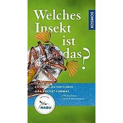 Welches Insekt ist das?. Heiko Bellmann  - Buch