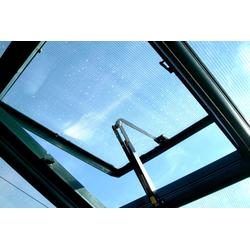Rion Dachfenster für