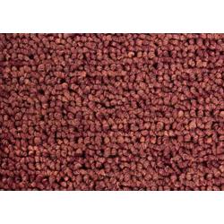 ANDIAMO Teppichboden Bob, Schlingenteppichboden natur
