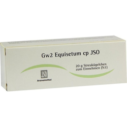 Gw2 Equisetum cp JSO