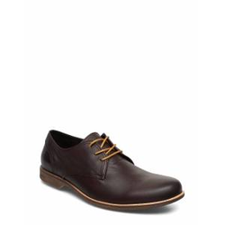 SNEAKY STEVE Fall Low Shoes Business Laced Shoes Braun SNEAKY STEVE Braun 43,44,46,42,45,41,40