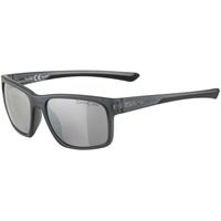 Alpina Lino I Brille grau 2021 Brillen