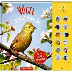 Vögel Mit 12 echten Tierstimmen
