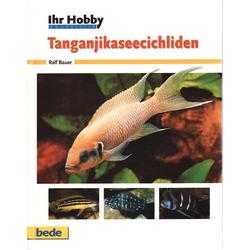 Ihr Hobby Tanganjikaseecichliden als Buch von Ralf Bauer