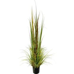 Kunstpflanze Gras im Topf Gras, I.GE.A., Höhe 165 cm bunt