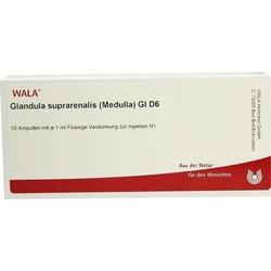 GLANDULA SUPRARENALES Medulla GL D 6 Ampullen 10 ml