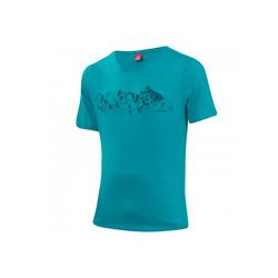 Printshirt Merino Cf