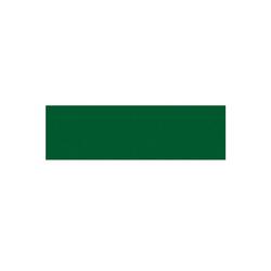 AS4HOME Möbelfolie Tafelfolie grün Möbelfolie 0,45 x 1,5 m, Muster: Uni grün