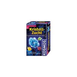 Kosmos Lernspielzeug Kristall-Zucht