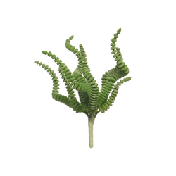 Kunstpflanze Sukkulente Oktopus, VBS, 6 cm