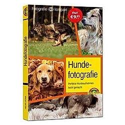 Hundefotografie - das perfekte Hunde Foto. Helma Spona  - Buch