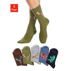 H.I.S Socken (5-Paar) mit unterschiedlichen Drachen Motiven bunt 31-34