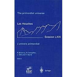 The Primordial Universe - Buch