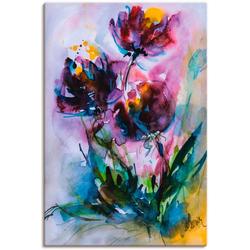 Artland Wandbild Küchenschelle, Blumen (1 Stück) 80 cm x 120 cm