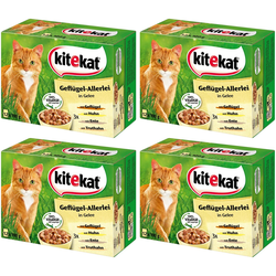 Kitekat Nassfutter Geflügel-Allerlei, 4 Pakete mit je 12 Beuteln á 100 g