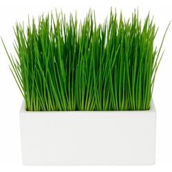 Kunstpflanze Gras, I.GE.A., Höhe 22 cm, in Keramikschale