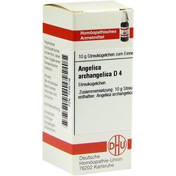 Angelica Archangelica D 4 Globuli