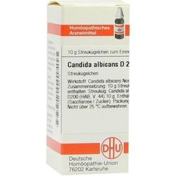 CANDIDA albicans D 200 Globuli 10 g