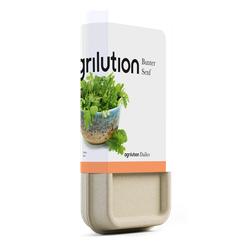Bunter Senf Seedbar Dailies