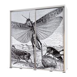 Szafa Wenecja 205 cm Rycina z owadami