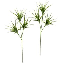 Kunstpflanze Tillandsia, I.GE.A., Höhe 63 cm, 2er Set grün