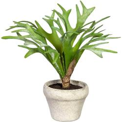 Künstliche Zimmerpflanze Geweihfarn Geweihfarn, Creativ green, Höhe 24 cm, im Zementtopf