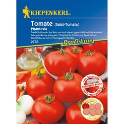 Tomaten (Salat-Tomate) Phantasia, F1