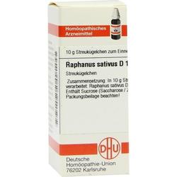 RAPHANUS SATIVUS D12