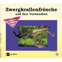 Zwergkrallenfrösche und ihre Verwandten als Buch von Frank Schäfer