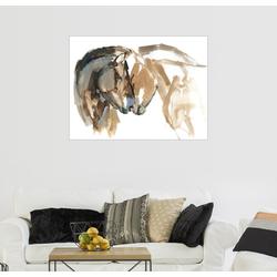 Posterlounge Wandbild, Nüstern an Nüstern 40 cm x 30 cm