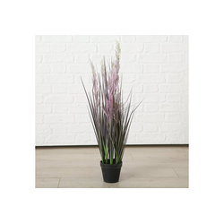 "Kunstpflanze Kunstpflanze ""Schilfrohr"" im Topf H80 cm, BOLTZE"
