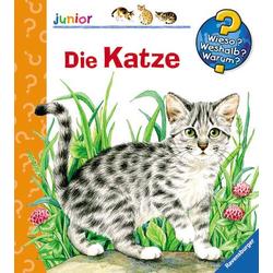 WWWjun21: Die Katze