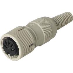 Hirschmann ICON Kabelkupplung MAK 3100 S gr