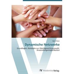 Dynamische Netzwerke als Buch von Björn Maier