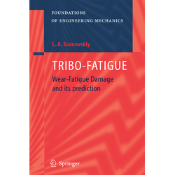 Tribo-Fatigue als Buch von Leonid A. Sosnovoskiy