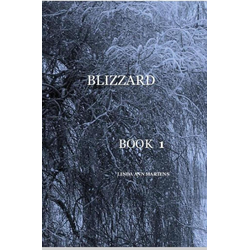 BLIZZARD BOOK 1 LINDA ANN MARTENS als Buch von Linda Ann Martens