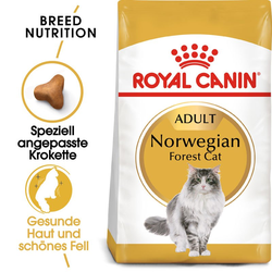 ROYAL CANIN Norwegian Forest Cat Adult Trockenfutter für Norwegische Waldkatzen 10 kg