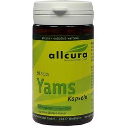 YAMS Kapseln 250 mg Yamspulver