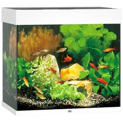 JUWEL AQUARIEN Aquarium Lido 120 LED, BxTxH: 61x41x58 cm, 120 l weiß