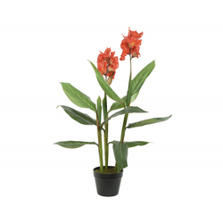 Kunstpflanze CANNA(H 89 cm)