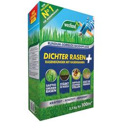 Westland Rasendünger Dichter Rasen, mit Rasensamen, 3,5 kg, für ca. 100m²
