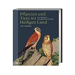 Pflanzen und Tiere im Heiligen  Land. Peter Goodfellow  - Buch