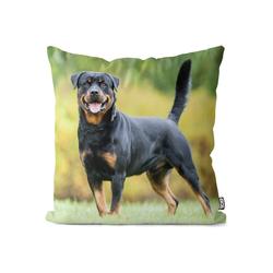 Kissenbezug, VOID (1 Stück), Rottweiler Kissenbezug Rottweiler Hund Jagd Jagdhund Kampfhund Kampf Rasse Haus 50 cm x 50 cm