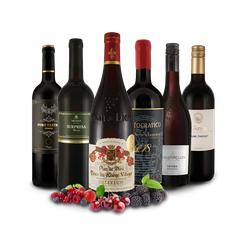 Probierpaket Ausgewählte Rotweine