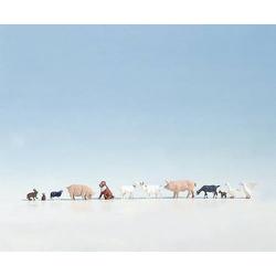NOCH 36711 Tier-Figuren  Auf dem Bauernhof