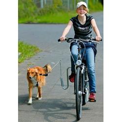 Heim Fahrradhalter Fahrradhalter für Hunde silberfarben