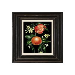 Holzbild Mandarine Ø 70,7 cm x 50 cm x 50 cm x 2 cm