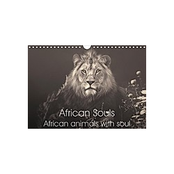 African Souls African animals with soul (Wall Calendar 2021 DIN A4 Landscape)
