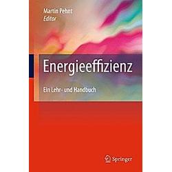 Energieeffizienz - Buch